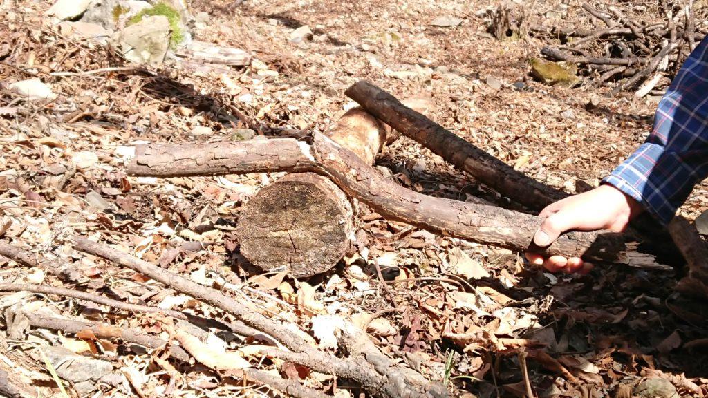 枯れ枝 薪作り2
